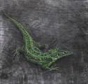 Ящірка