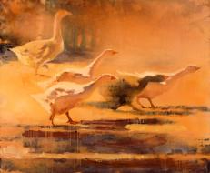 «Geese» 2009